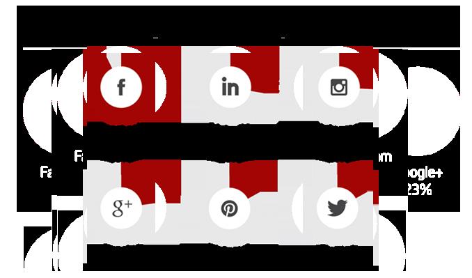 statistics - social media sites used